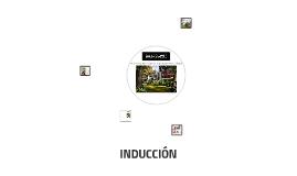 INDUCCIÓN SOLIS COLOMER