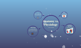 Anatomy vs Physiology