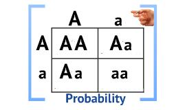 Biology 11.2  Probability