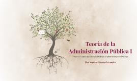 Teoría de la Administración Pública I