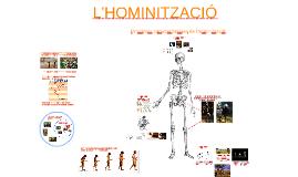 Característiques de l'hominització