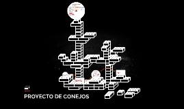 PROYECTO DE CONEJOS