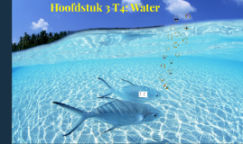 H6 T4 Water