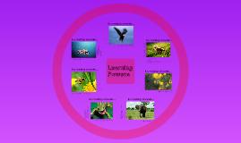 Learning Power Skill Set - Drama