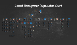 Copy of Summit Management Organization Chart