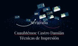 Copy of Serigrafía