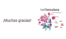 Presentación Tesis Floricultura