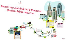 Técnico en Contabilidad y Finanzas