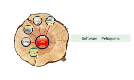 Software     Peluqueria