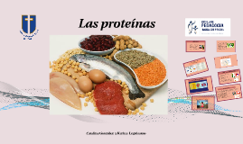 Copy of Las proteinas