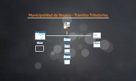 """Ingreso al servicio """"Municipalidad de Rosario-Trámites Tributarios"""""""