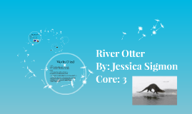 Copy of River Otter