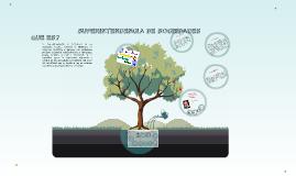 Copy of SUPERINTENDENCIA DE SOCIEDADES