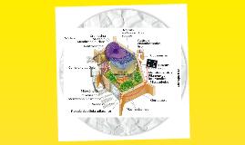 Copy of los conceptos básicos de las celula
