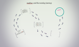 medina and the monkey journey