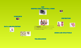 RSV - Respiratory Syncytial Virus
