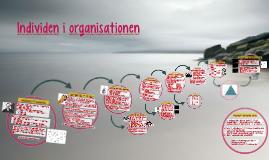 Individen i organisationen