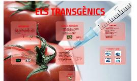 ELS TRANSGÈNICS