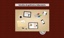 Copy of Estudios de gabinete y laboratorio