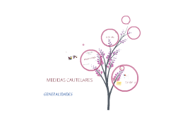 Medidas cautelares - generalidades