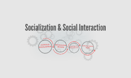 Socialization & Social Interaction