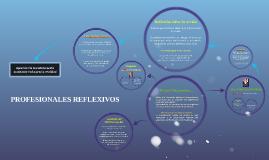 PROFESIONALES REFLEXIVOS