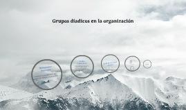 Grupos diádicos en la organización