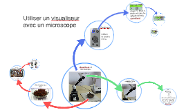 visualiseur et microscope