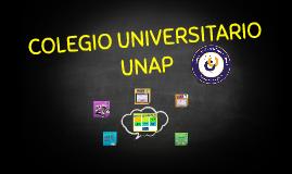 COLEGIO UNIVERSIRARIO UNAP