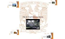 Copy of Miguel Angel Velasco Barrita