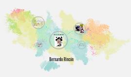 Bernardo rincón