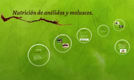 Nutrición de anélidos y moluscos.