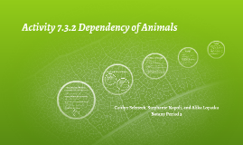 Activity 7.3.2 Dependency of Animals