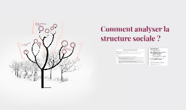 2018 Comment analyser la structure sociale ?