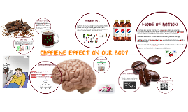 CAFFIENE EFFECT ON OUR BODY