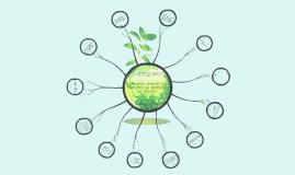 Copy of Impactos ambientais causados na produção de cerveja