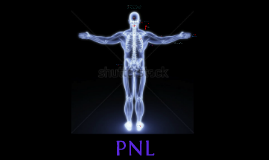 PNL 1