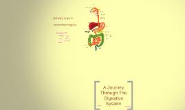 Copy of Digestive System