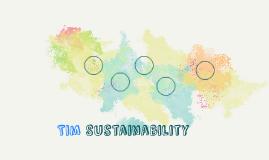 Tim Sustainability report