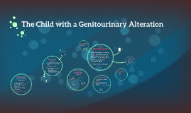 The Child with a Genitourinary Alteration