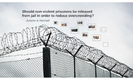 Should Non-violent risoners be released from jail in order t