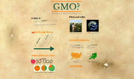GMO, what's wrong ?