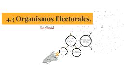4.3 Organismos Electorales.