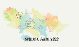 Visual Analysis