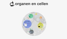 Organen en cellen
