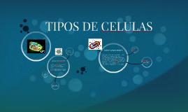 Copy of TIPOS DE CELULAS