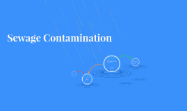 Sewage Contamination