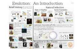 1. Evolution 1 (Ch 22-1):  Introduction to Evolution
