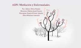 ADN: Metilación y Enfermedades.