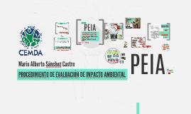 PROCEDIMIENTO DE EVALUACION DE IMPACTO AMBIENTAL